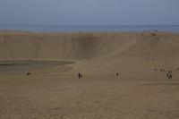 遥かに広がる鳥取砂丘初めての山陰ツアー⑧ - 風の彩り-2