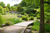 淡彩風景画講座・5月のテーマ「公園を描く」ご紹介 - 絵画教室アトリエTODAY