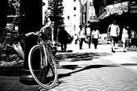 Snap No290 - MASIなPhoto Life