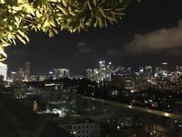 シンガポールにやってきました - bluecheese in Hakuba & NZ:白馬とNZでの暮らし