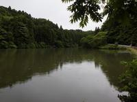 かほる花々 - 千葉県いすみ環境と文化のさとセンター