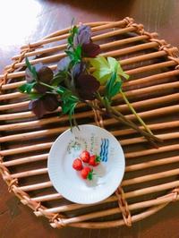 ワイルドストロベリーと庭の様子 - blancheの日記