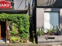 代官山植栽散歩 - 東京ベランダ通信
