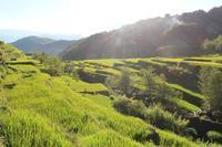 「演劇ワークショップでアジアの農村をつなぐ」② 高校の先生たちとの聞き書き&演劇ワークショップ開催 - Cordillera Green Network ブログ