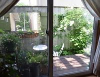 持ち寄りランチ と お庭でティータイム♪ - my story***