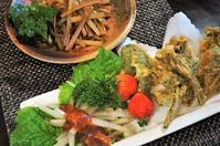 ■季節料理【1本の山ウドでお料理が3品出来ました^^】 - 「料理と趣味の部屋」