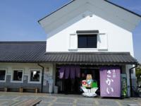 足利から関宿、道の駅サカイ、ドンキまで往復ーサイクリング - わたらせ