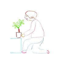 パキラを移動する - illustration note