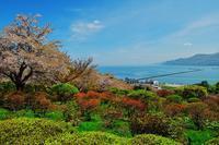 小樽散歩......1 - slow life-annex