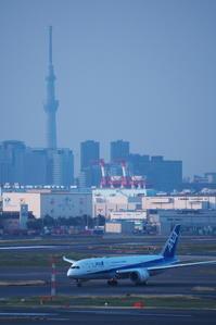 HND - 355 - fun time (飛行機と空)