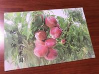 桃を採りに新社まで - 南国・台湾の暮らしから