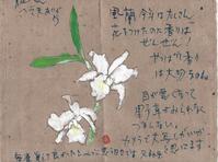 香りは大切 - 毎日手紙を描こう★貰うともっと嬉しい手紙
