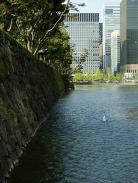 東京そぞろ歩き:皇居 - 日本庭園的生活