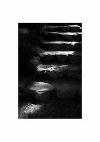 石段 - looking for Light