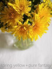 黄色のファンタジーと母の日 - serendipity blog