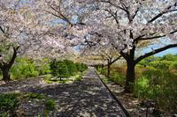 小樽散歩......2 - slow life-annex
