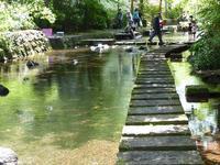 三島の源兵衛川でカニ見~つけ♪ 熱海家族旅は三島で川遊び♪ - ルソイの半バックパッカー旅