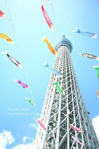 東京の空 - 色音あそび