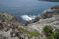 南伊豆 タライ岬へ - 花、書、音楽、旅、人、、、日常で出会う美しごとを