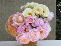 豪華なバラとショボいバラ - bowerbird garden ~私はニワシドリ~