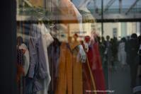 store window - Noriko's Photo  -light & shadow-
