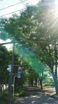 横浜市港北区・太尾堤緑道にあるヨコハマビエンナーレ'89の彫刻遺産群 - 鴎庵