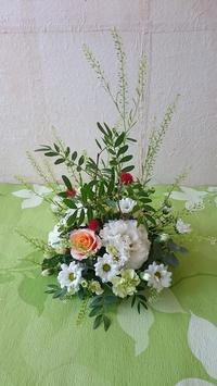 5月15日のお花倶楽部 - HANATSUDOI
