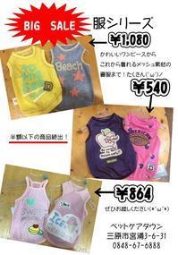 5月末まで夏服のBIGSALE延長!! - ペットケアタウン ブログ
