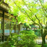 新緑薫る 伝統的和風建築「的山荘」にて。 - poem  art. ***ココロの景色***