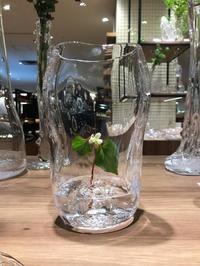 本日最終日17時まで。20180509→0515 takatomi daisuke glass show @玉川タカシマヤ 5階 器百選 - glass cafe gla_glaのグダグダな日々。