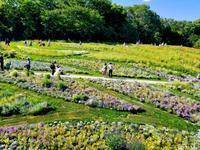 2018GW 里山ガーデン - マーブルDiary