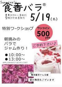 食香バラ販売会! - さにべるスタッフblog     -Sunny Day's Garden-