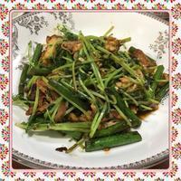 豚肉・ニンニクの芽・豆苗の辛味噌炒め(レシピ付) - kajuの■今日のお料理・簡単レシピ■
