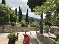 浜田省吾さんが歌う画像のオルチャ渓谷にあるあの『木』が特定できた! - フィレンツェのガイド なぎさの便り