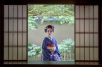 京都 大徳寺黄梅院にて - Amo Amo Annex
