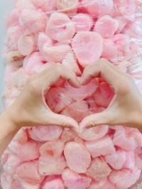 さくらぼうを大人食い - エミュアールスタッフブログ