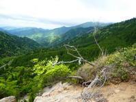 欲張り登山 御在所岳 (1,209.4M)   登頂 編 - 風の便り