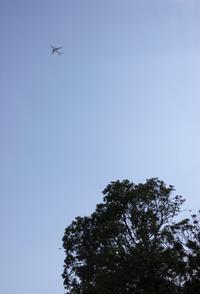 空も飛べるはず - Life w/ Pure & Style