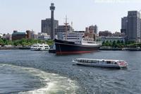 昨日、横浜港で僕は「船上カメラマン」になった! - 四季彩の部屋Ⅱ