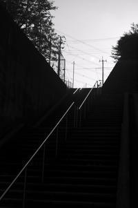 handrails - S w a m p y D o g - my laidback life