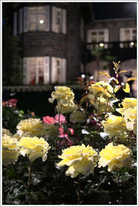 旧古河庭園 -11 - Camellia-shige Gallery 2