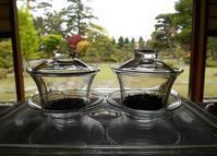 新緑と花ざかりの庭園茶会 - Tea Wave  ~幸せの波動を感じて~