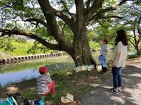 【活動レポ】スケッチ遠足@東浦和 4/22 - 造形+自然の教室  にじいろたまご