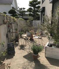 雑誌みたいな実家のガーデン - 神戸芦屋Marikaのインテリア&整理収納ブログ