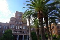 九州大学総合研究博物館 - A  B  C