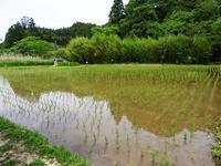 センターの季節本番! - 千葉県いすみ環境と文化のさとセンター