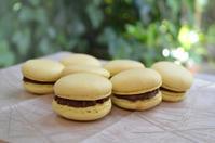 ミルクパッションフルーツマカロン - 調布の小さな手作りお菓子教室 アトリエタルトタタン