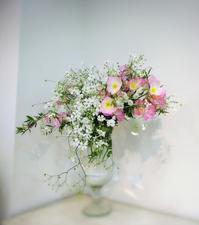 春物から夏物へそして… - マダムサフランのおしゃべりブログ