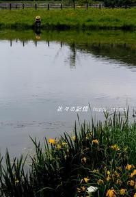 真夏日の公園にて・・ - 花々の記憶    happy_momo