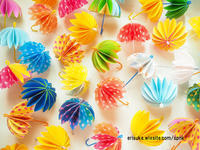 傘をいっぱい。 - 暮らしをつくる、DIY*スプンク